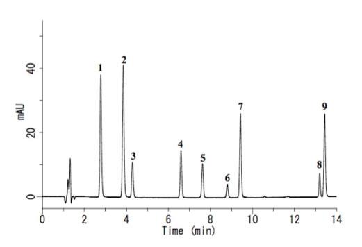 グラフィー クロマト 高速 液体
